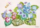 ポストカード 花の妖精たちⅡ